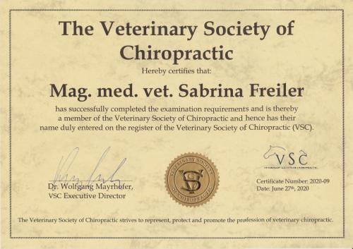 Chiro Diplom Freiler (2)